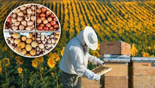 Jaвни позиви за субвенцију пољопривредне производње
