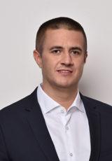 Vladimir Bibić